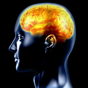 epilepsy.127180239_std